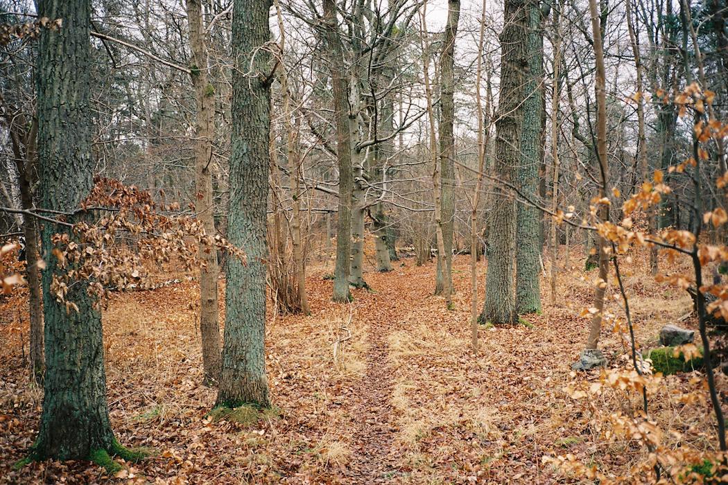 stockholm-diaries_ontheroad_009