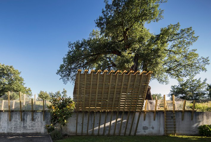 A Treehouse Designed As A Kids' Playground