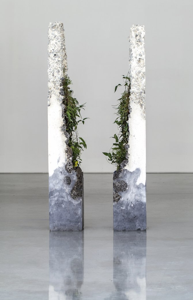 Jamie North Fills Concrete With Australian Plants iGNANTcom
