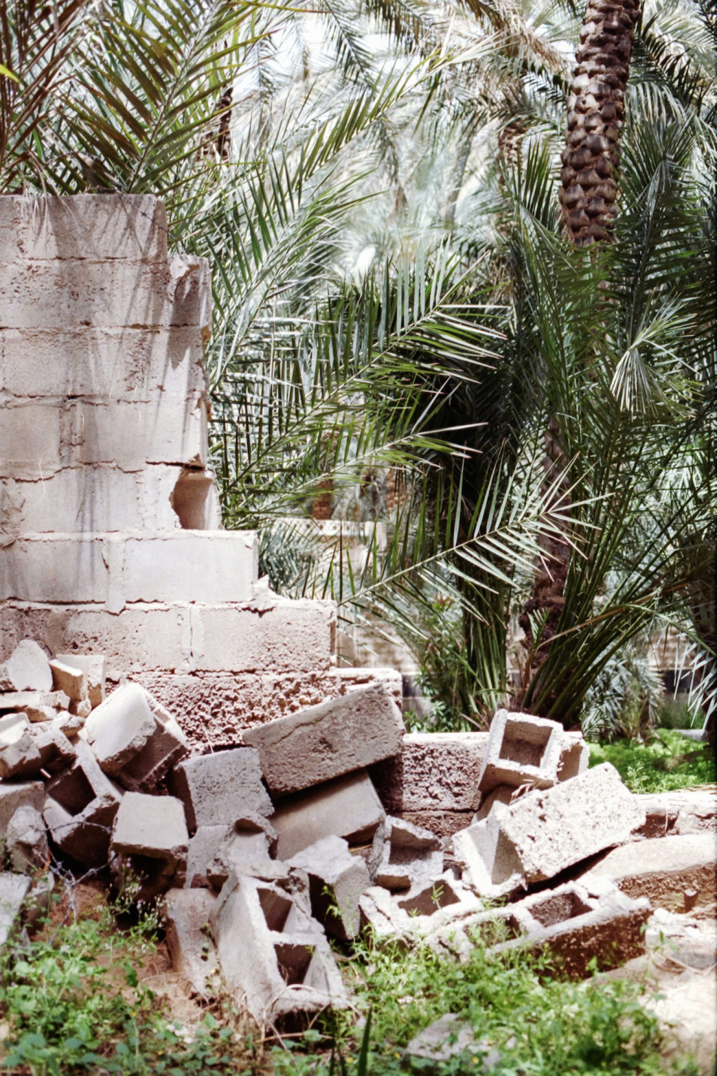 Silvia-Conde-Abu-Dhabi-52