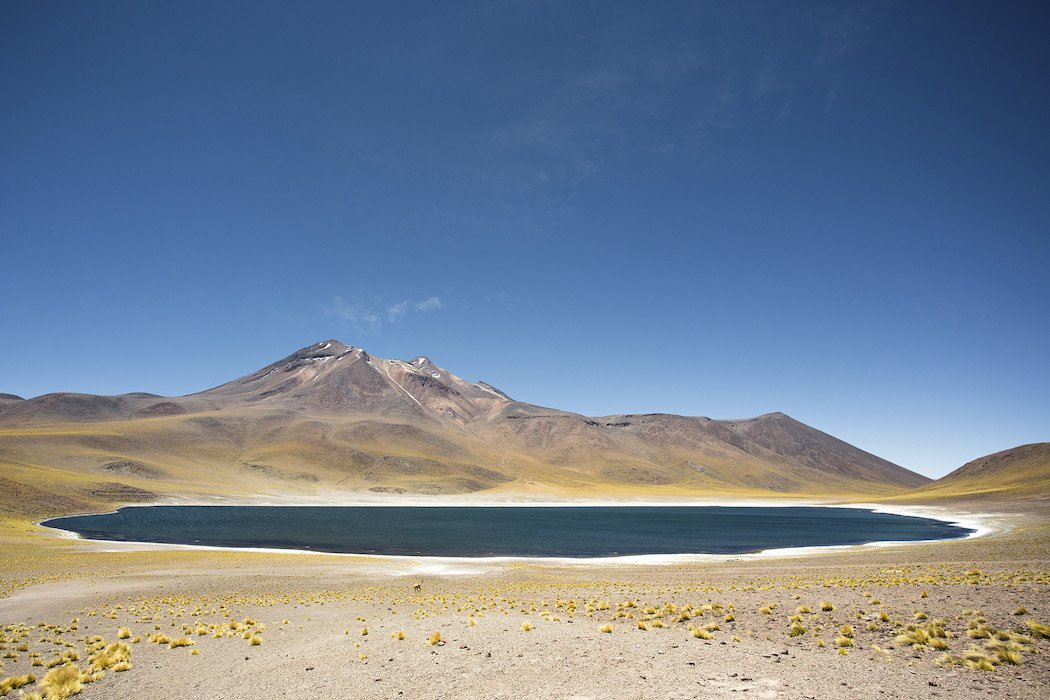 TheColorsOfSouthAmerica_0022_GOLDENFOX