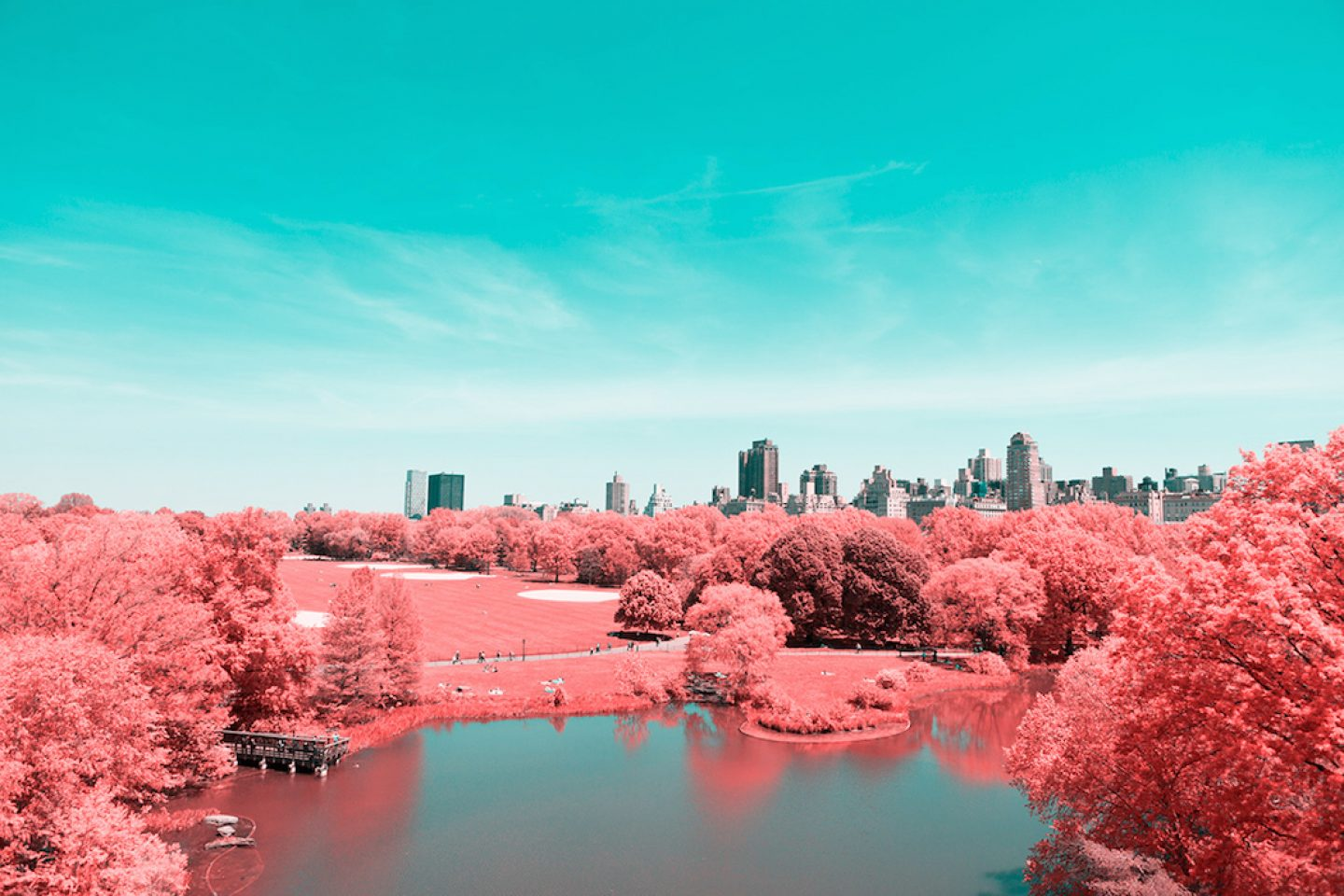 infrarednyc_photography_006