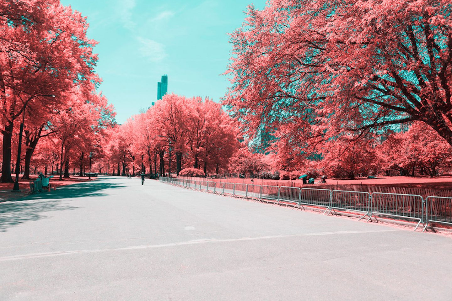 infrarednyc_photography_007