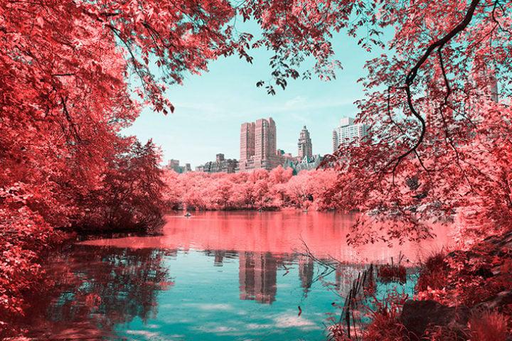 infrarednyc_photography_pre