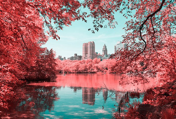 An Infrared Take On New York's Central Park