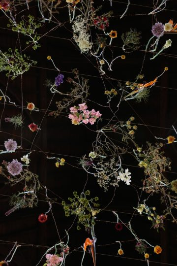 Rebecca Louise Law, Fashion and Gardens exhibition