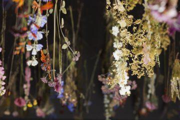 Rebecca_Law_The_Pressed_Flower_©_Nicola_Tree