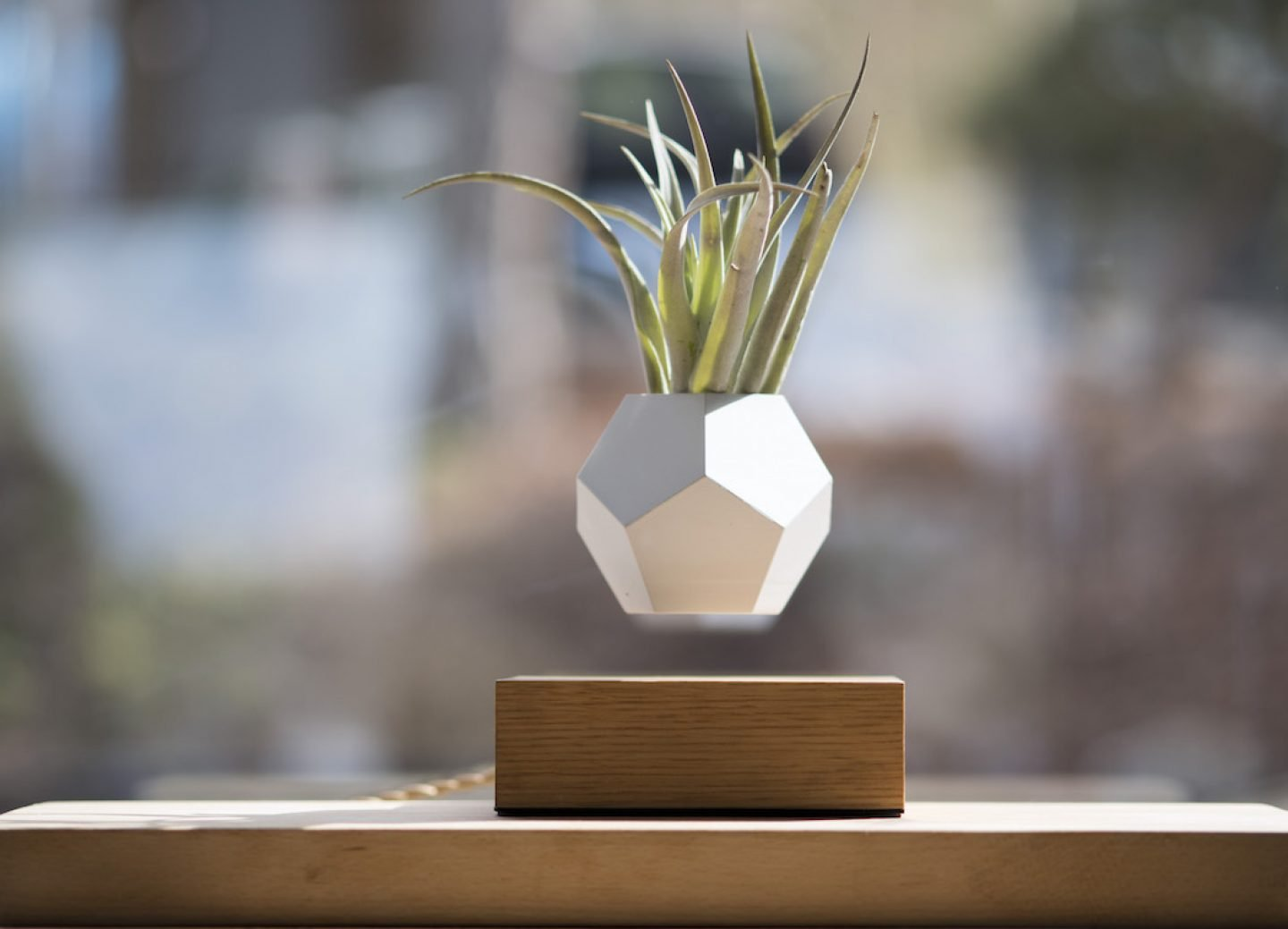 5 Planter Designs Advocating For Greener Interiors Ignant