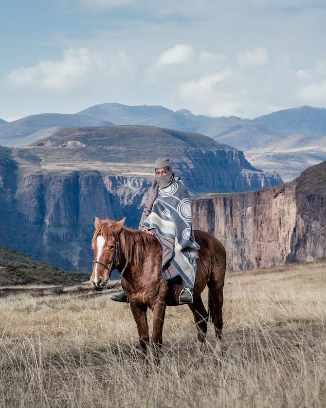 horse - Lira