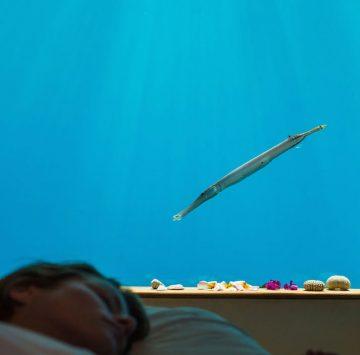6-underwater-room-Manta-Resort-Pemba-Island-Tanzania-Architecture_