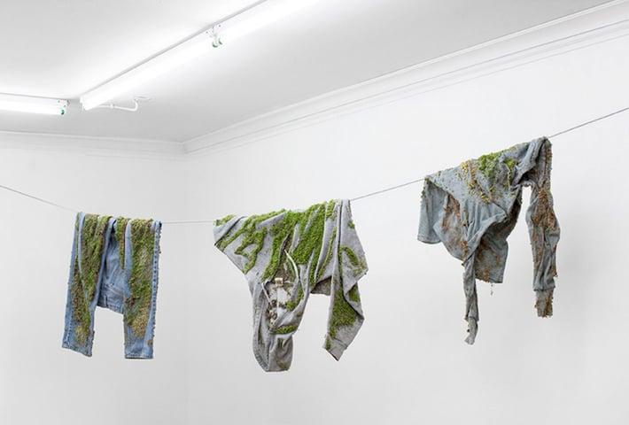 Bea Fremdermann Lets Nature Take Back The New World