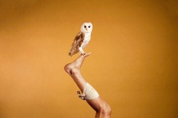 Photography_Ryan_McGinley_Animals_02