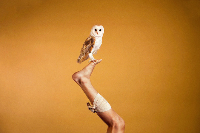 Photography_Ryan_McGinley_Animals_02