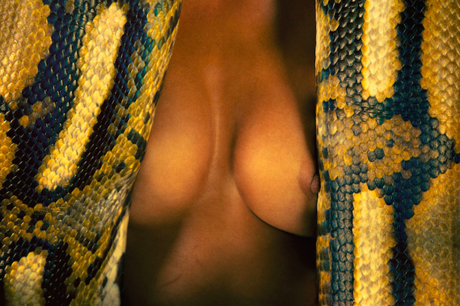 Photography_Ryan_McGinley_Animals_09