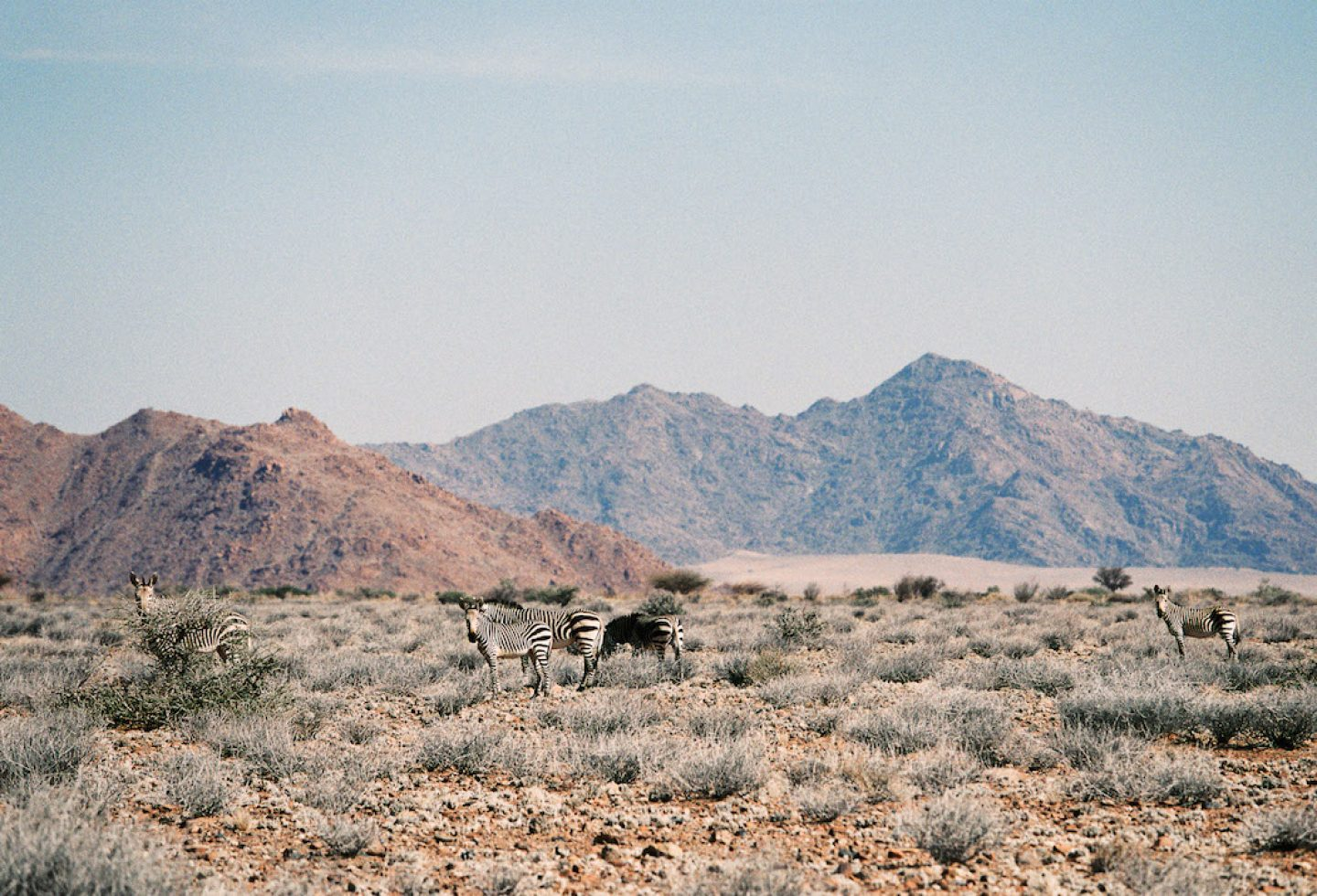 stefanhaehnel_namibia_preview-2