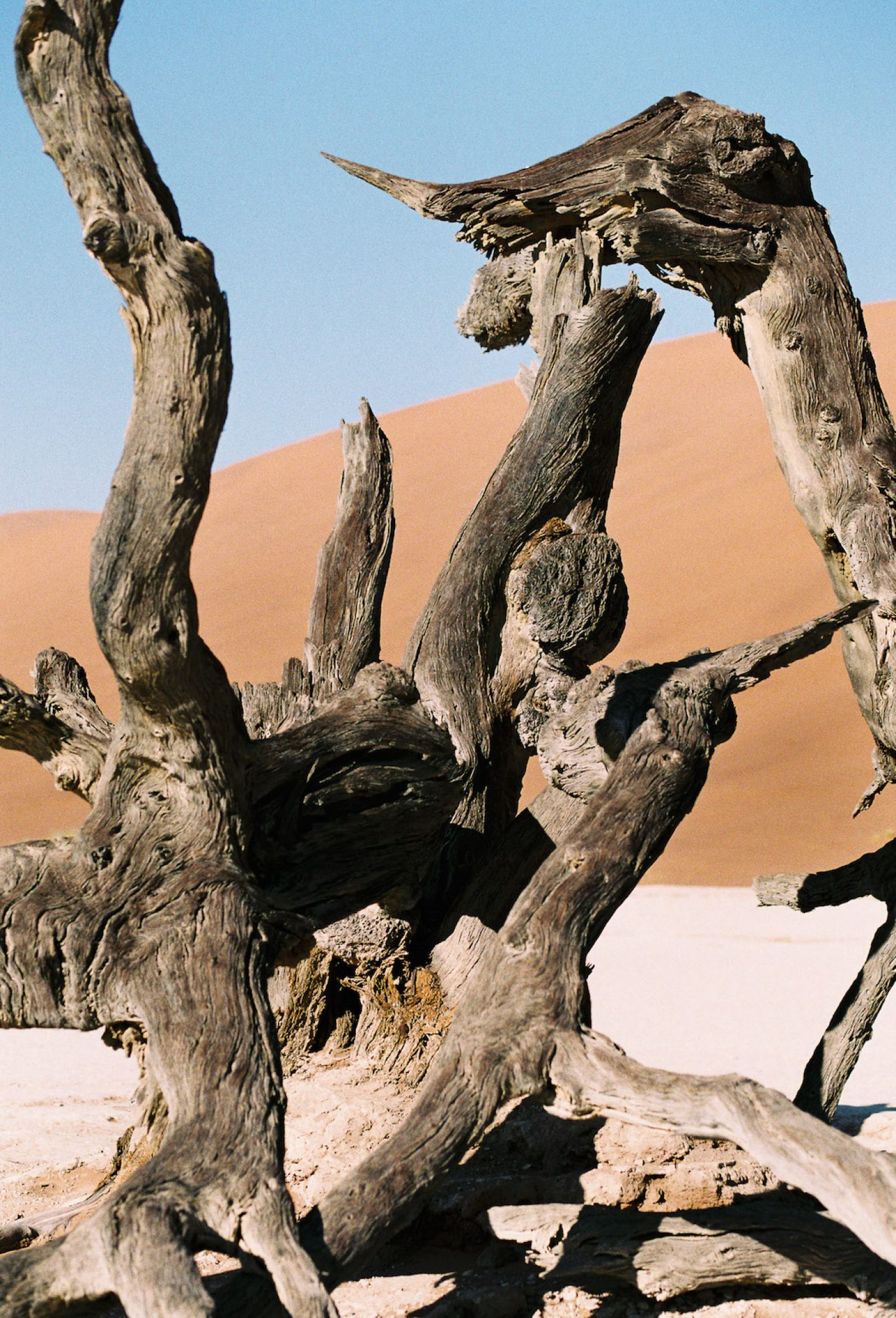 stefanhaehnel_namibia_preview-27