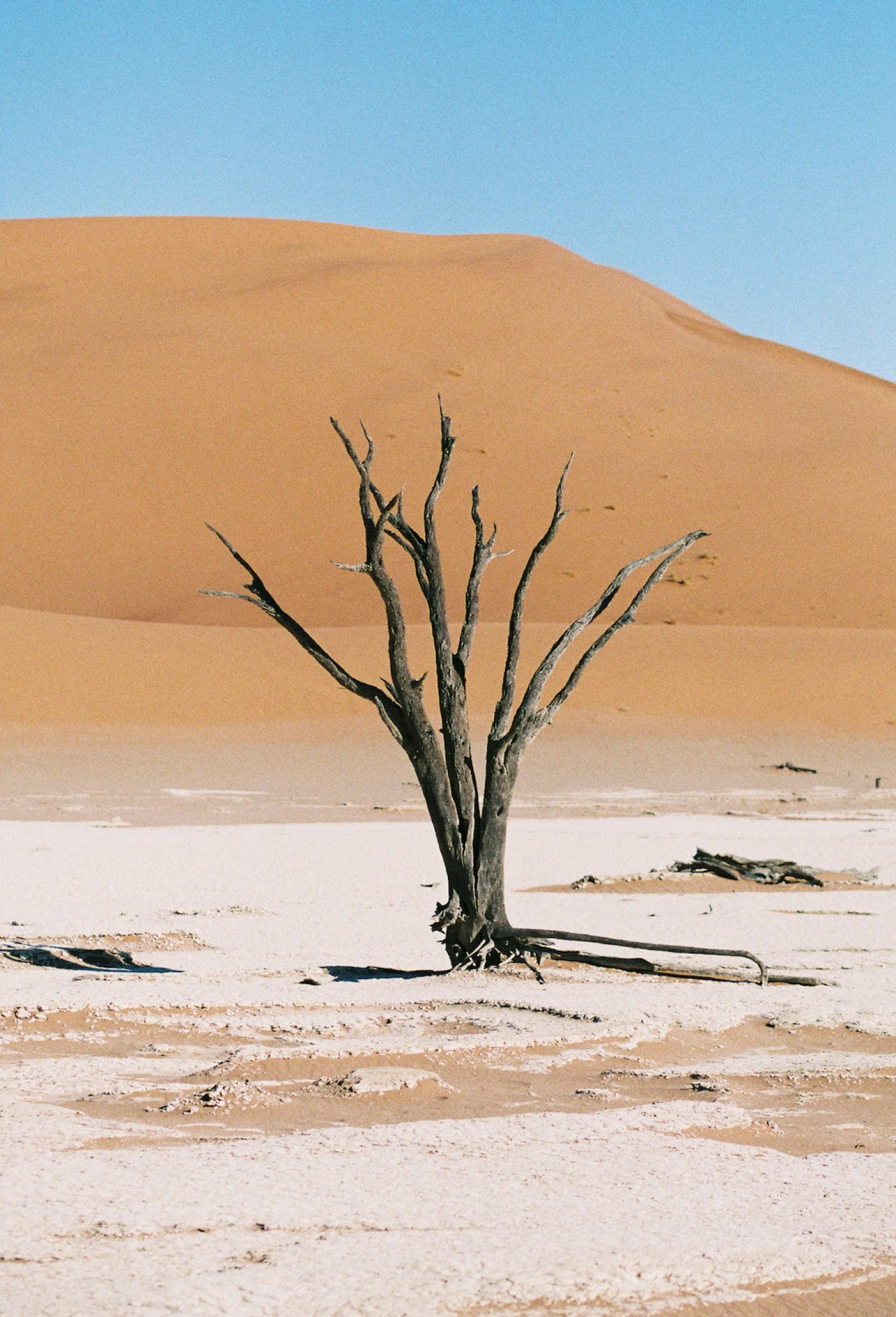 stefanhaehnel_namibia_preview-3