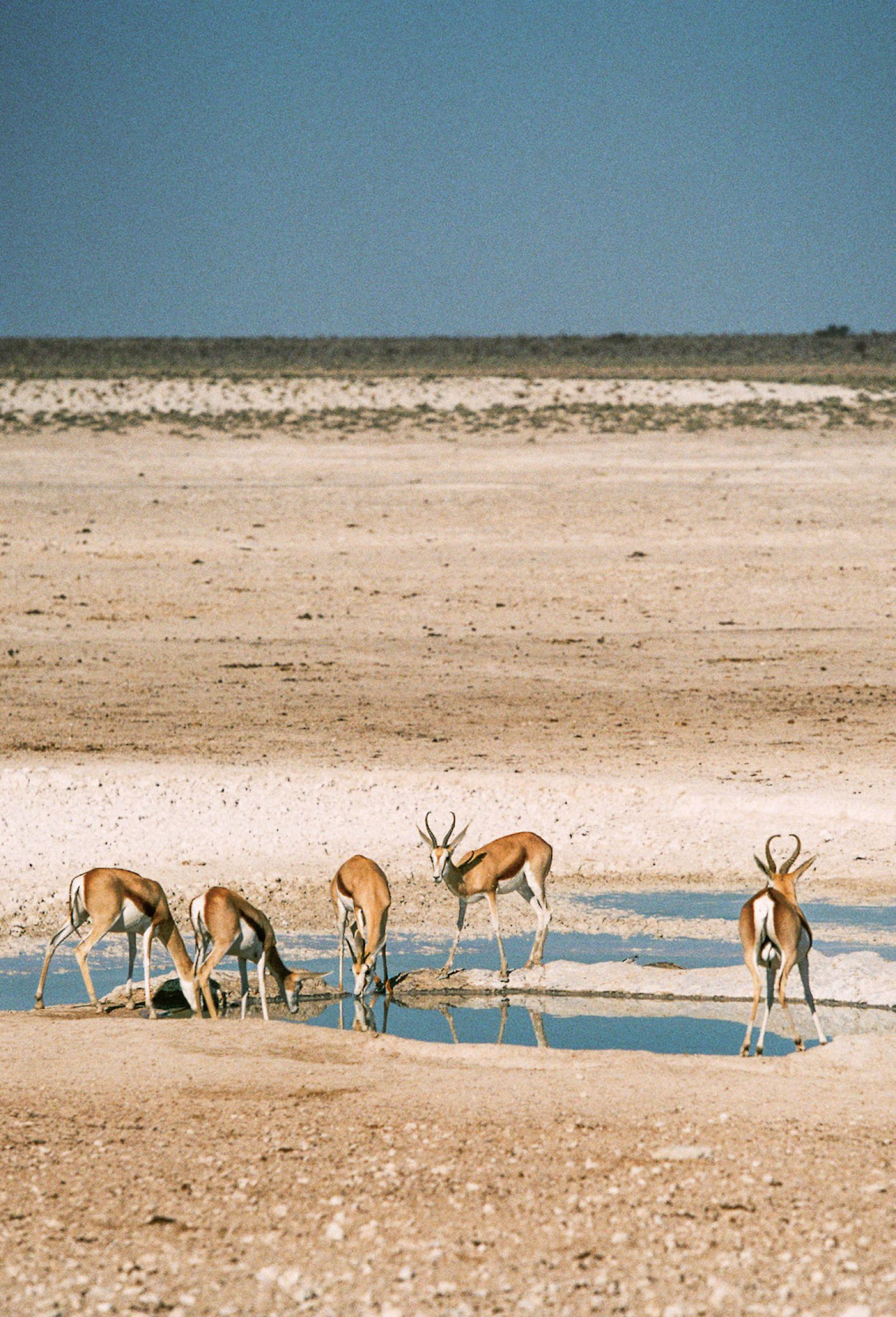 stefanhaehnel_namibia_preview-75