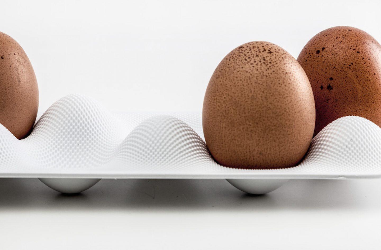 eggwave_neff_werteloberfell_07