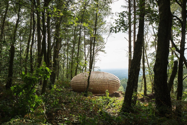 architecture_perspectivepavillon_giles-miller_01