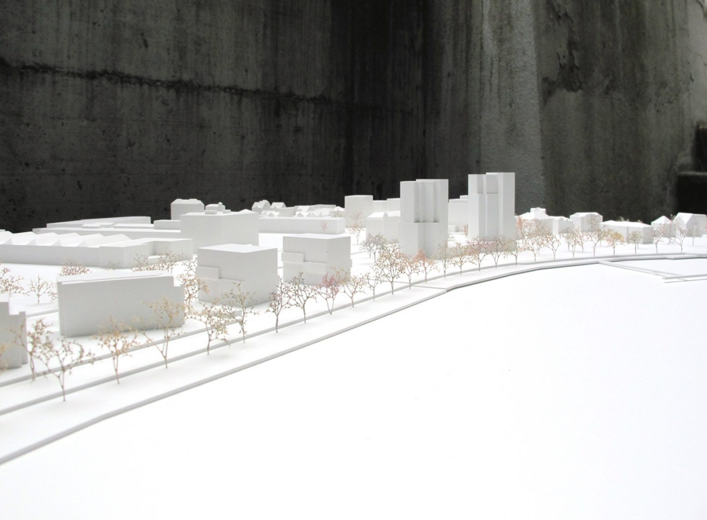 meierhug_architects_02