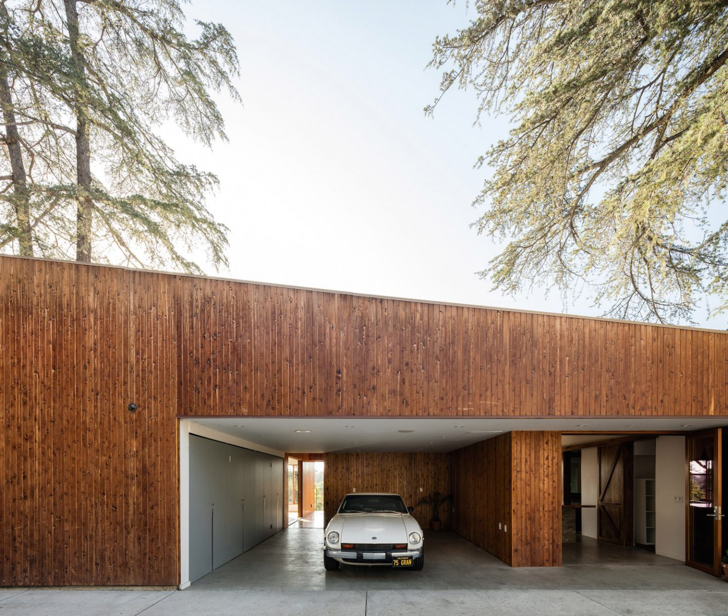 architecture_houseintrees_anonymousarchitects_2