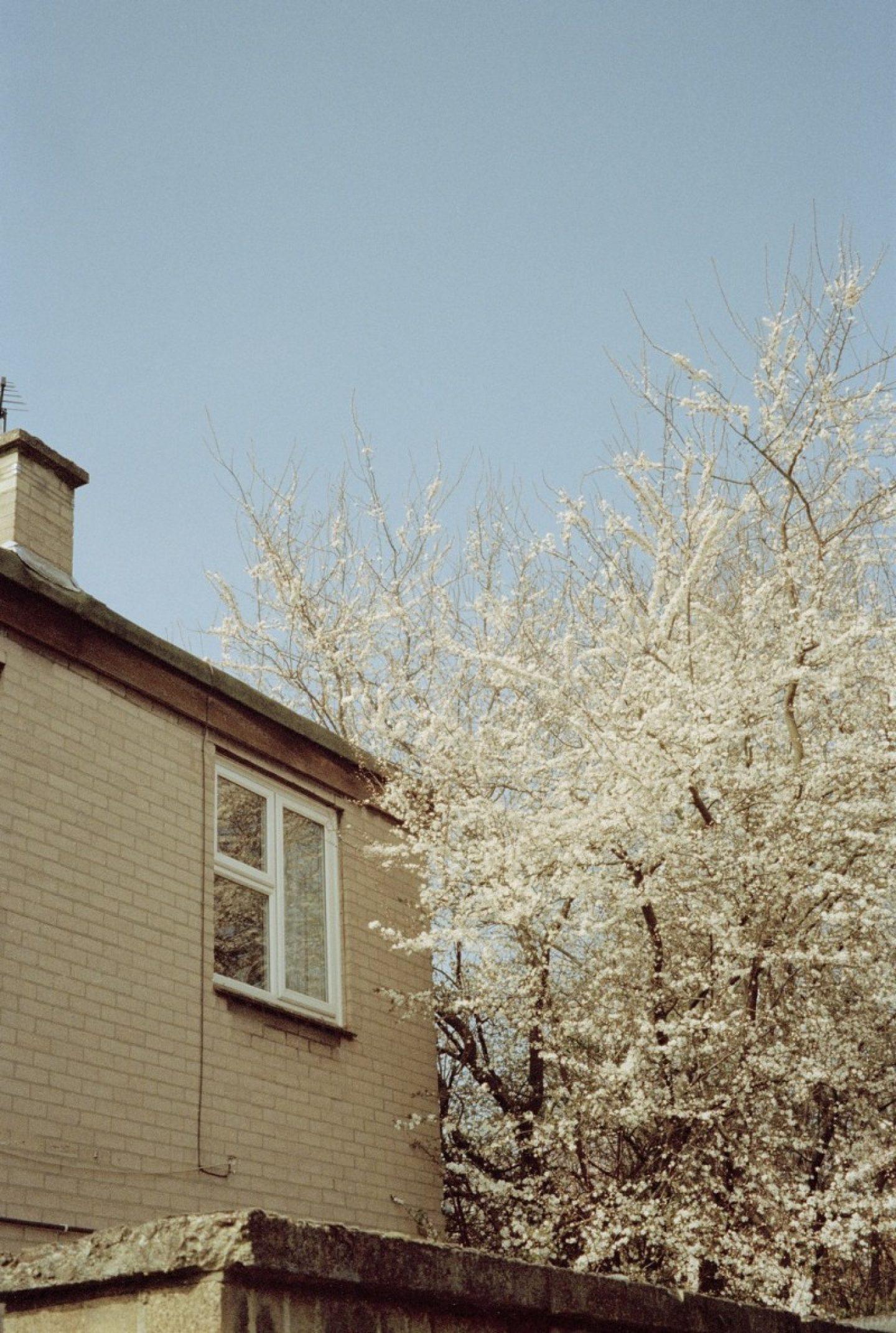 kelianne_photography-11-kopiowanie