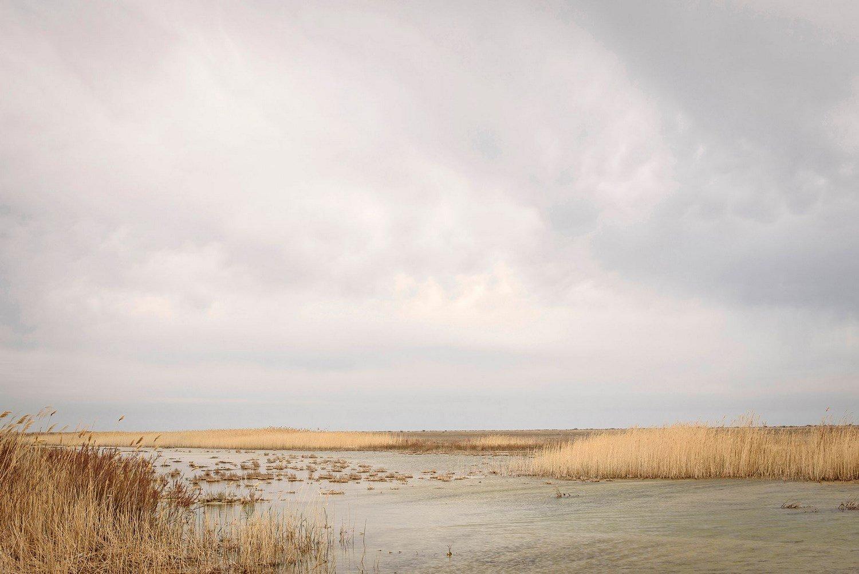 Swamp around Aralsk.
