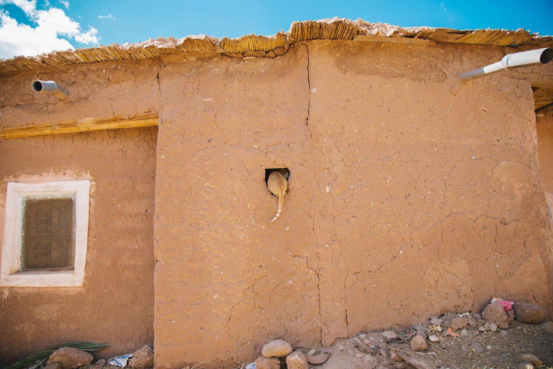 OTR_Marocco_NinaKleinrath_07
