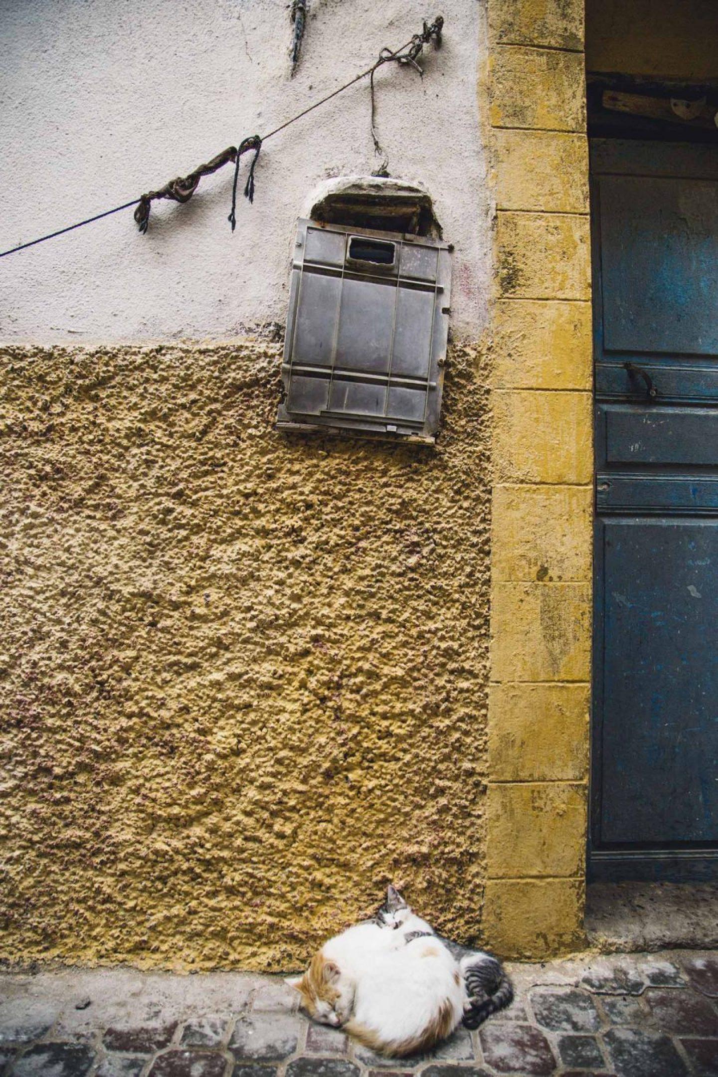OTR_Marocco_NinaKleinrath_17