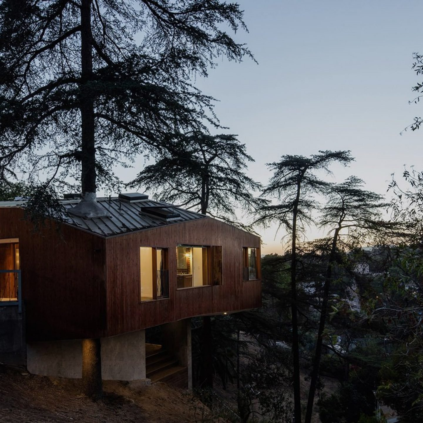 Architecture_HouseInTrees_AnonymousArchitects_7