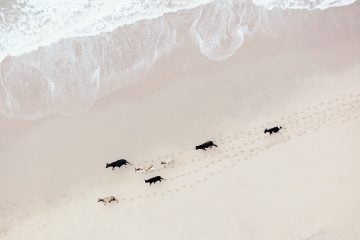South_Africa_Aerial_Zack_Seckler-6