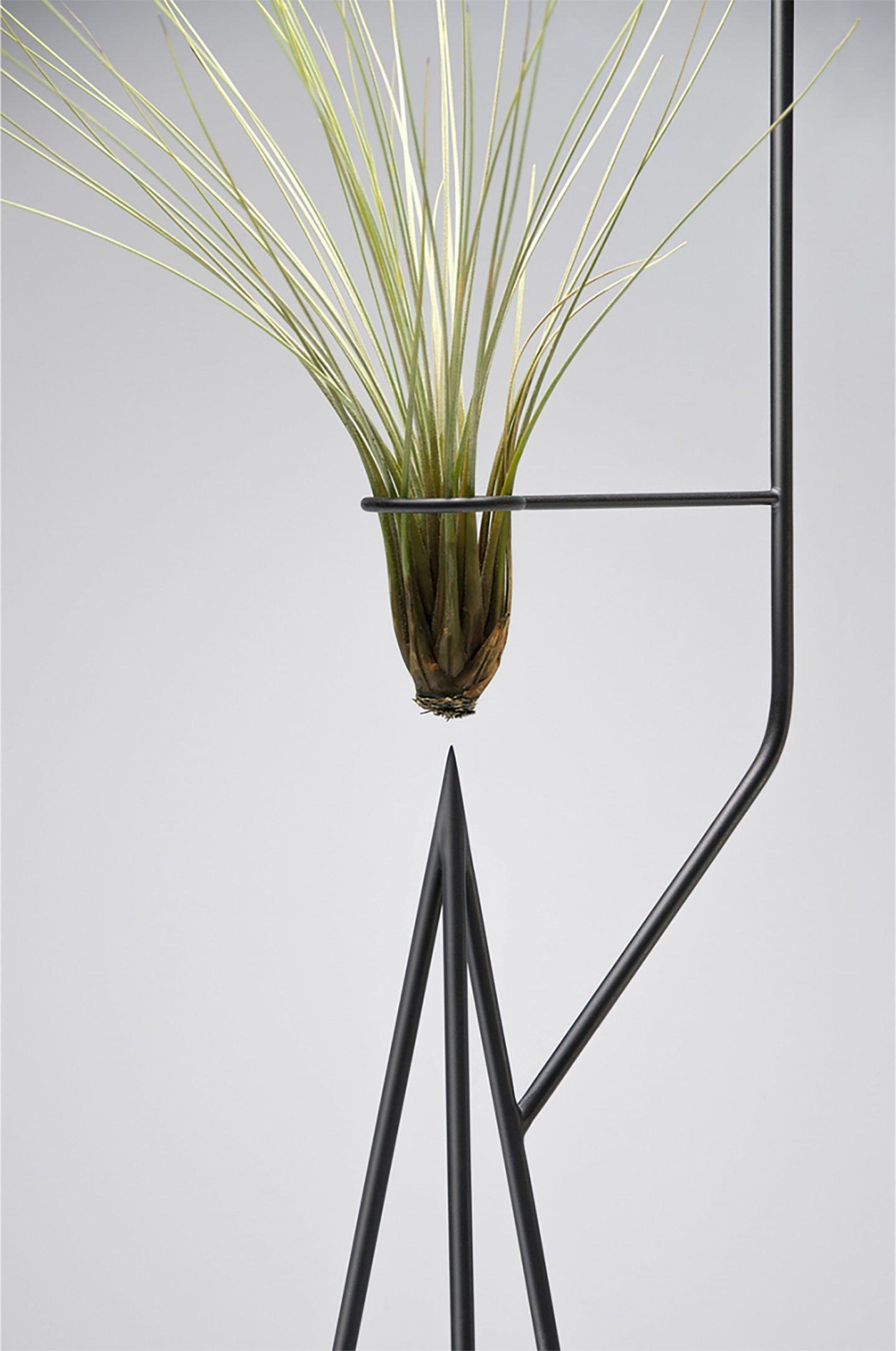 iGNANT-Design-Goula-Figuera-Viride-07 copy