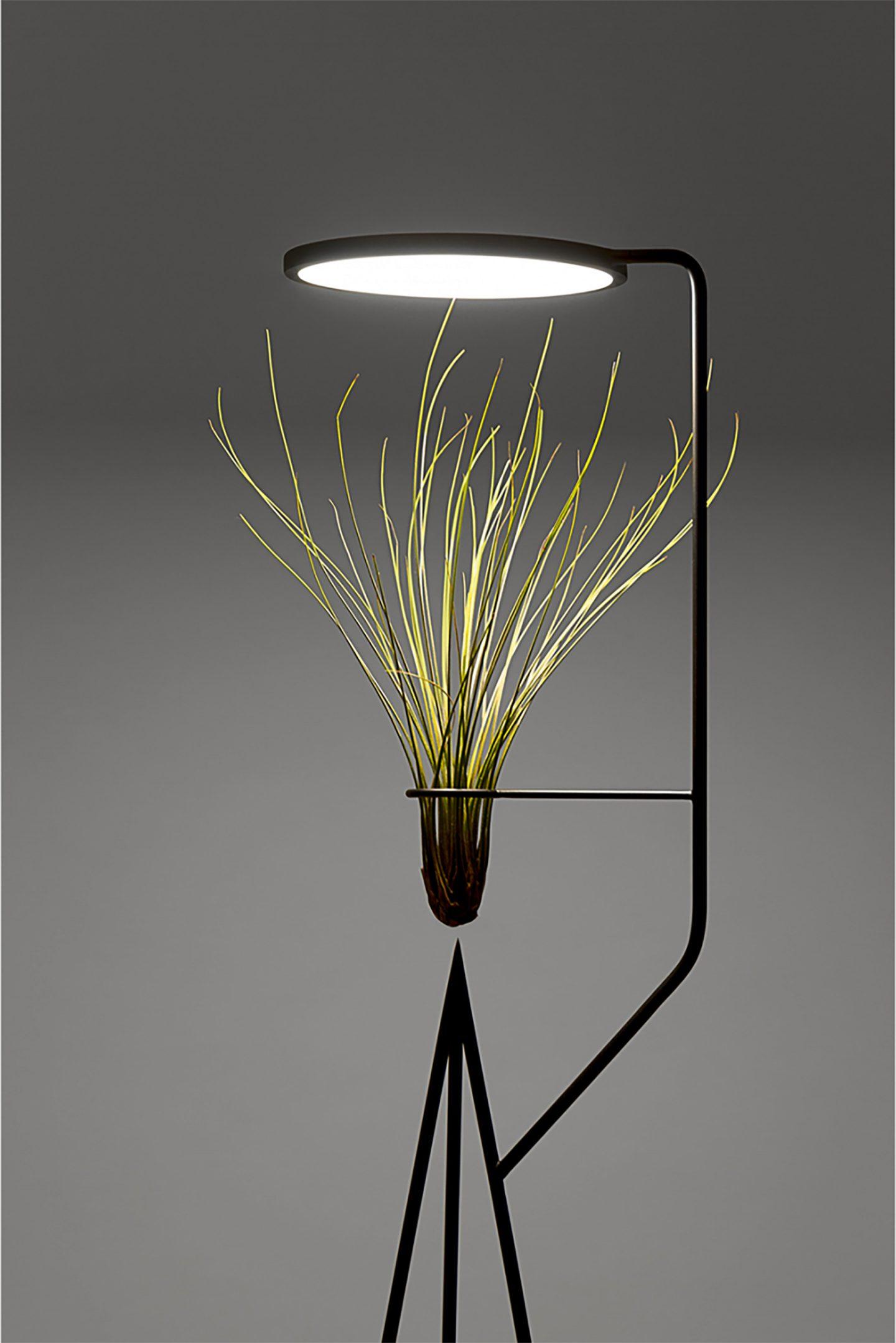 iGNANT-Design-Goula-Figuera-Viride-08 copy