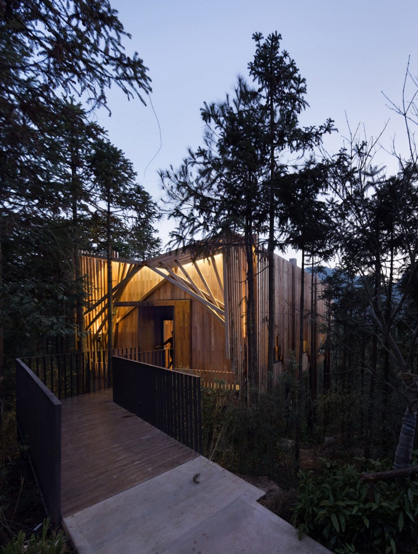 ignant_arch_treehouse_m_012