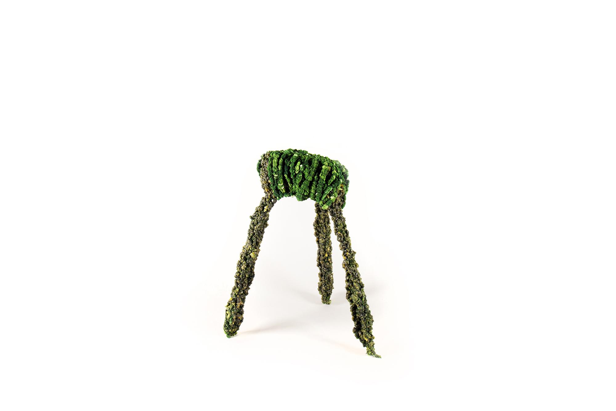 Overgrown Objects By Felix Poettinger