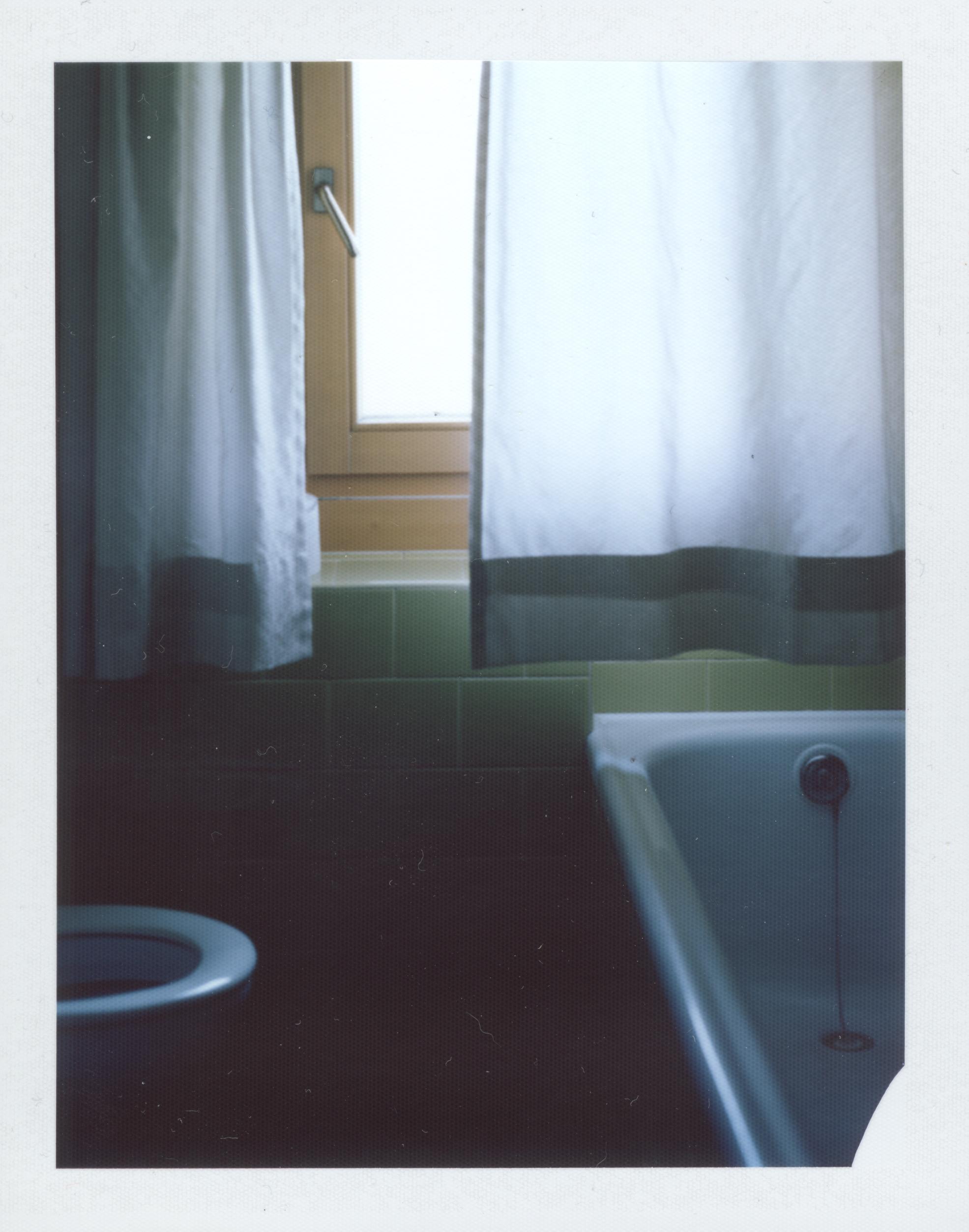 Portrait Of A house By Emilian Hinteregger