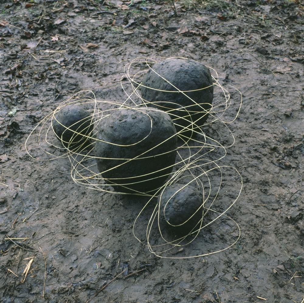 iGNANT_Photography_Andy_Goldsworthy_Land_Art_3