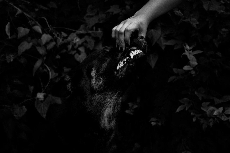 ignant_photography_jordie_oetken_002