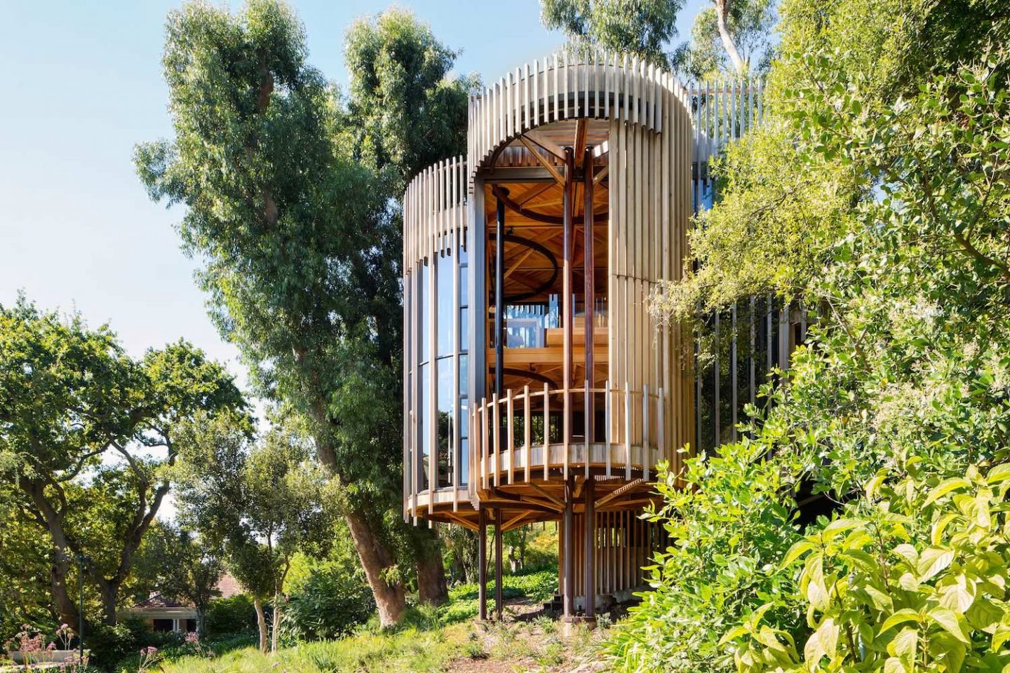 paarman-tree-house-by-mv-architecture-residential_dezeen_2364_col_10