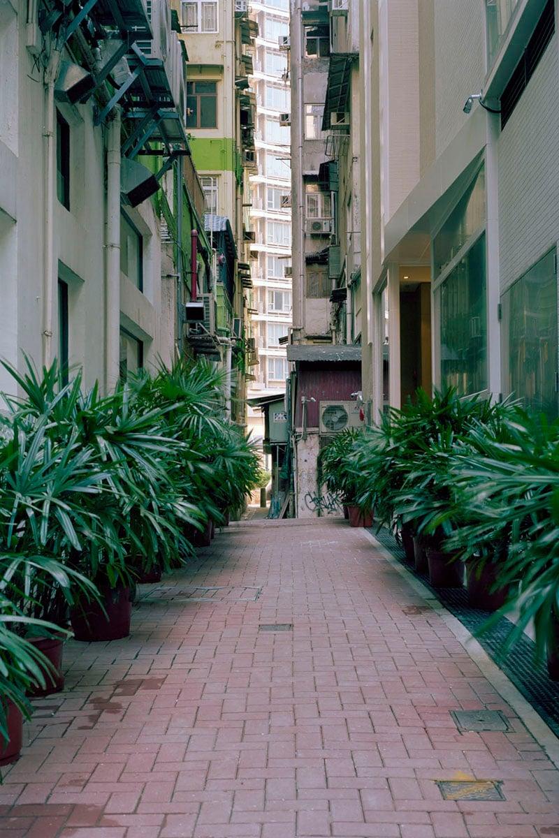 Hong Kong Alleys By Ajay Malghan
