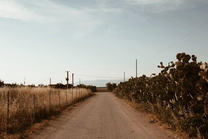Familiar Ground By Tiziana Gualano
