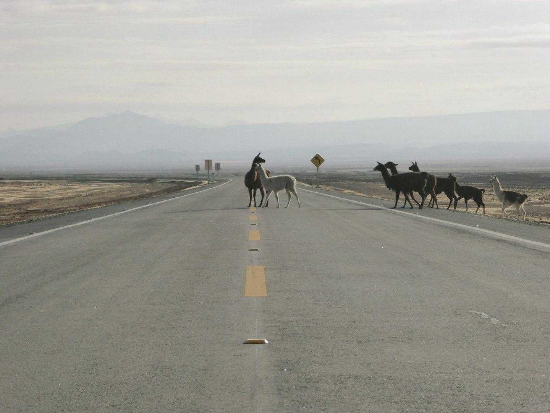 iGNANT_OnThe Road_Anke_Nunheim_Bolivia-21