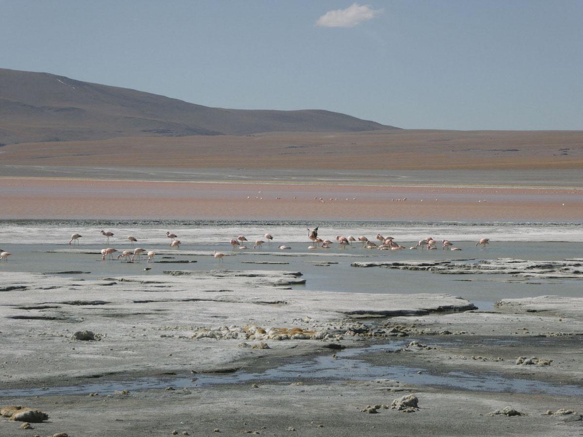 iGNANT_OnThe Road_Anke_Nunheim_Bolivia-6