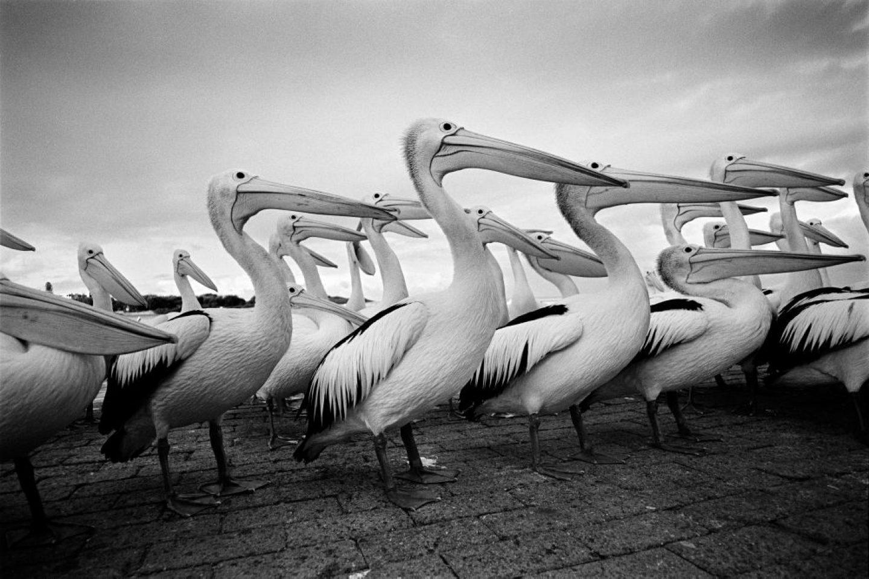 Photography_StreetPhotography_EmilGataullin_03