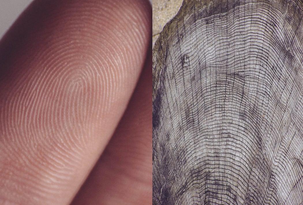 human_vs_nature_agnieszka_lepka_03