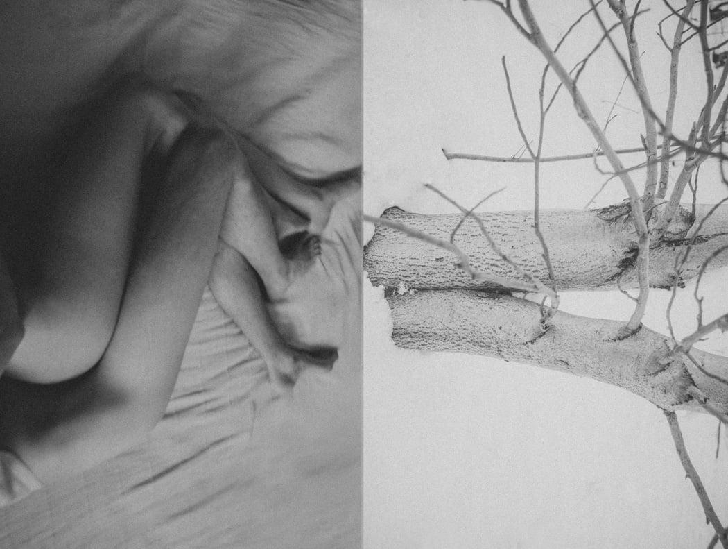 human_vs_nature_agnieszka_lepka_10