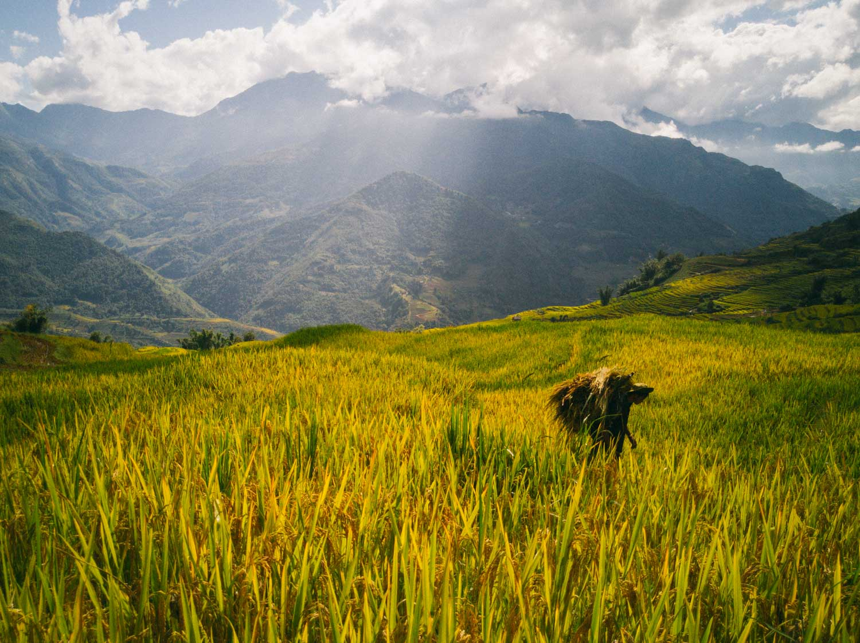 iGNANT_Huawei_24Hours_Vietnam-16