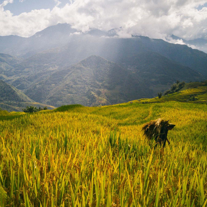 iGNANT_Huawei_24Hours_Vietnam-25