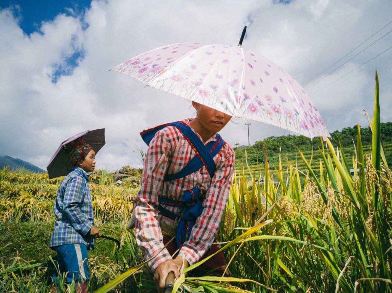 iGNANT_Huawei_24Hours_Vietnam-3